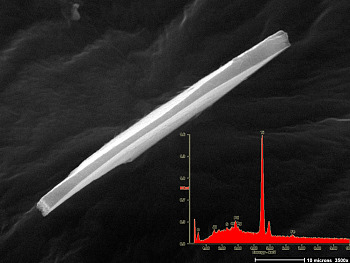 Fig. 1  Microscopic bar of titanium metal found on Cooper's tie. Inset shows elemental signature via x-ray spectroscopy.     (Length = 60 microns)